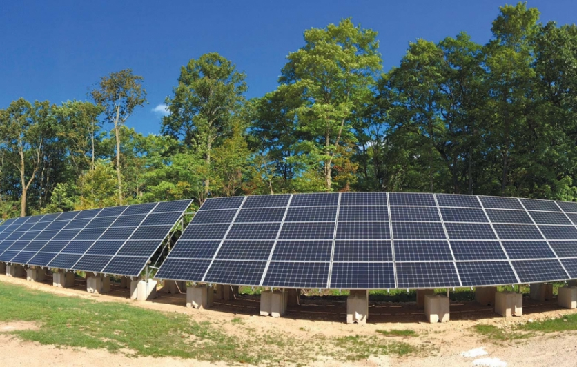 Last summer, Waseda Farms in Baileys Harbor added a solar-power system. The cows, pigs and chickens share the pastures at the progressive Door County farm with over 140 solar panels. Contributed photo