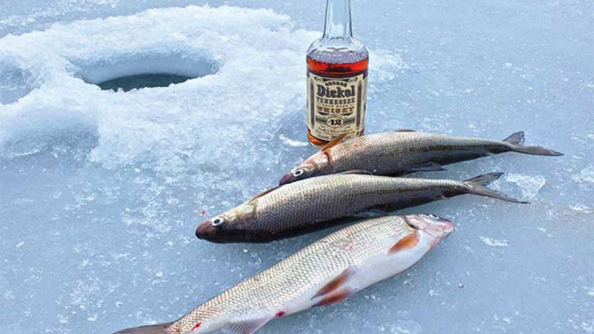 Whiskey and Fish