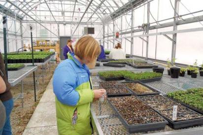 Green Bay Preble High School greenhouse